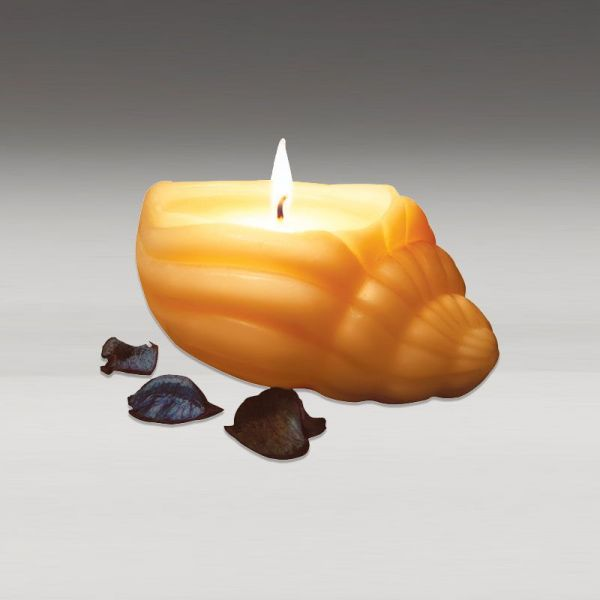 Sea Shell Candle